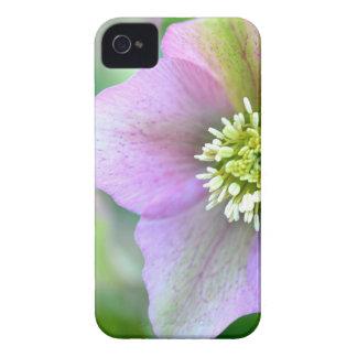 DSC_1865.JPG iPhone 4 Case-Mate CASES