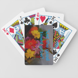 DSCN0684_Edited.JPG Bicycle Playing Cards