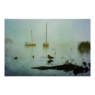 Duck and Yachts on a Misty Morning Poster