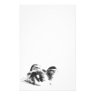 Duck Birds Animals Wildlife Photography Customised Stationery