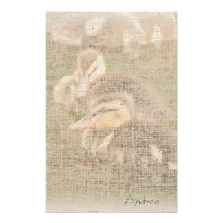 Duck Birds Animals Wildlife Photography Stationery Design
