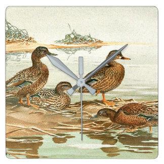 Duck Birds Wildlife Animals Pond Wall Clock