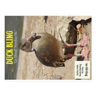 Duck Bling Postcard