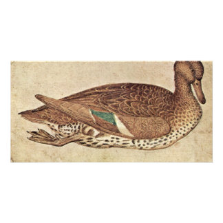 Duck By Pisanello (Best Quality) Customized Photo Card