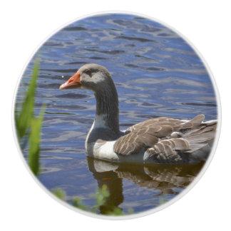 Duck Ceramic Knob