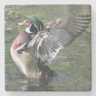 Duck Coaster Stone Coaster