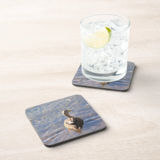 Duck Drink Coasters