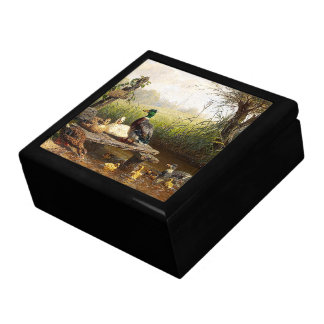 Duck Duckling Birds Animals Wildlife Pond Gift Box
