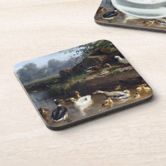 Duck Duckling Birds Pond Wildlife Animals Coaster