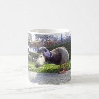 """Duck Encounter"" coffee mug"