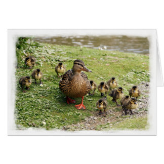 Duck Family Card