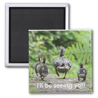 Duck Family Magnet
