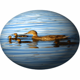Duck Family on Sphere Photo Sculpture