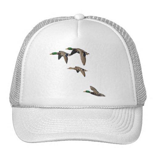 Duck Hunting Mallards in Flight Mesh Hats