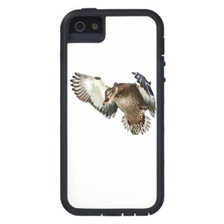 Duck in Flight iPhone 5 Cover
