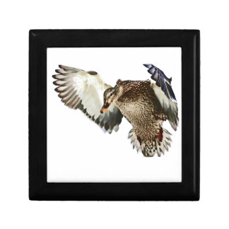 Duck in Flight Small Square Gift Box