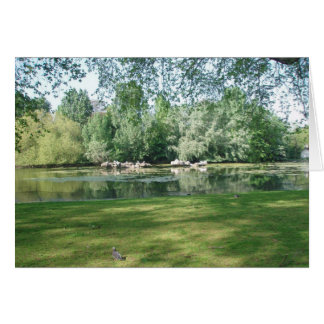 Duck Island, St. James Park Card