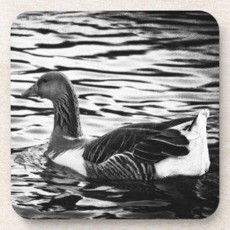 Duck on a Pond in black white Beverage Coaster