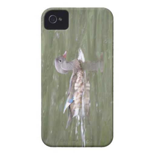 Duck on the Lake Blackberry Bold Case
