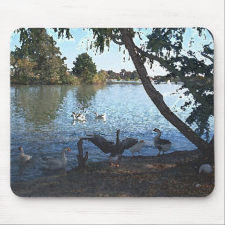 Duck Pond 2 - Mouse Pad