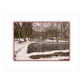 Duck Pond in Winter Snow Post Card
