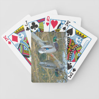 Duck Reflected Bicycle Playing Cards