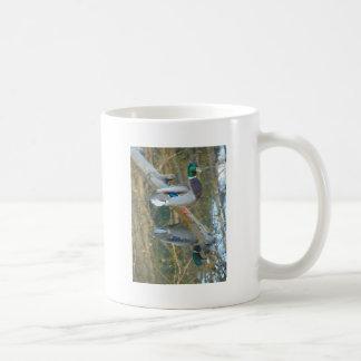 Duck Reflected Coffee Mug