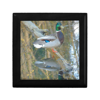 Duck Reflected Small Square Gift Box