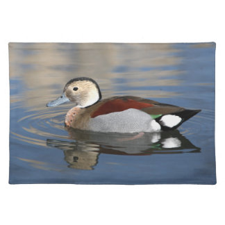Duck ringed teal bird beautiful photo placemat cloth place mat