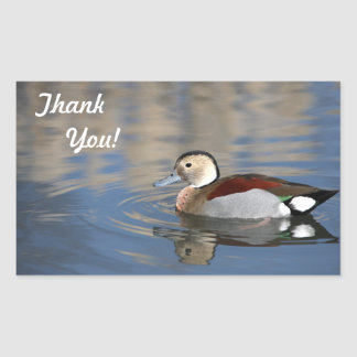 Duck, ringed teal photo thank you stickers