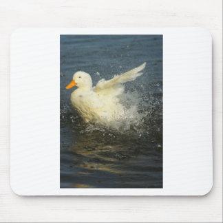 Duck Splash Mouse Pad