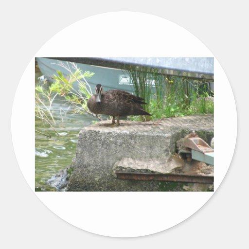 Duck Round Stickers