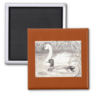 Duck & Swan Square Magnet
