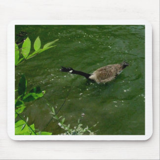 Duck that has lots to say mouse pad