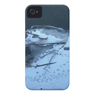 Duck Tracks In the Snow iPhone 4 Cases