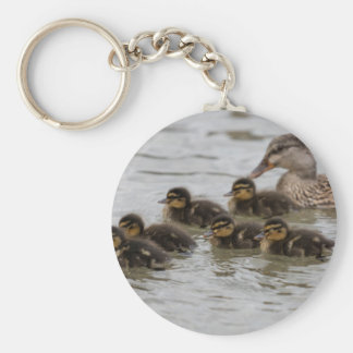 duck with her ducklings at lake basic round button key ring