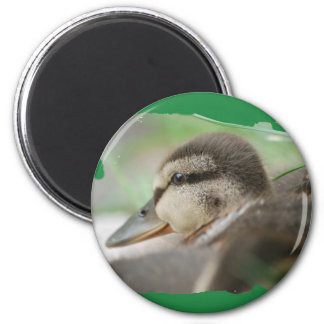 DUCKLING COLLECTION - by Jean Louis Glineur 6 Cm Round Magnet