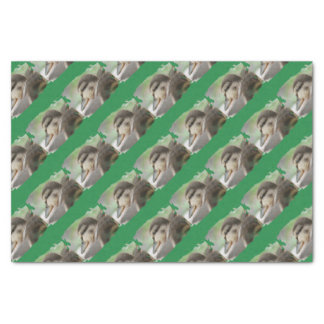 DUCKLING COLLECTION - by Jean Louis Glineur Tissue Paper