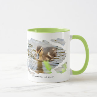 DUCKLING - photo Jean Louis Glineur Mug