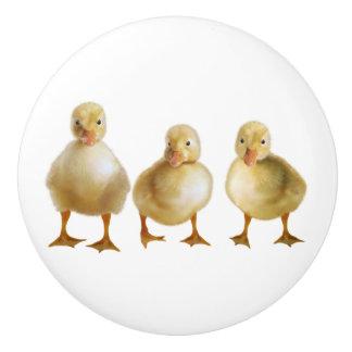 Ducklings Ceramic Knob