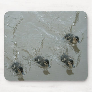 Ducklings Llangollen Canal Mouse Pad