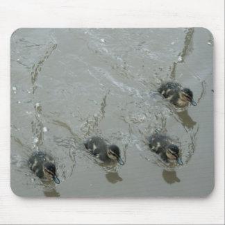 Ducklings Llangollen Canal Mousemat