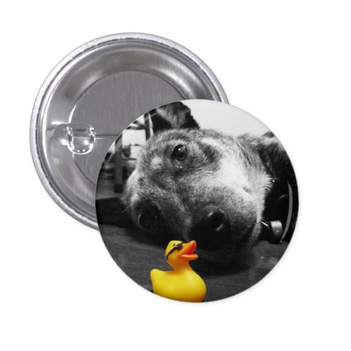 'Ducks Best Friend' Rubber Duck Button (small)