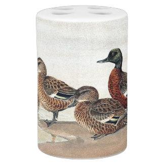 Ducks Birds Wildlife Animals Pond Bath Set