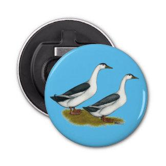 Ducks:  Blue Magpies