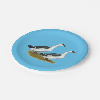 Ducks:  Blue Magpies Paper Plate
