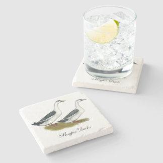 Ducks:  Blue Magpies Stone Beverage Coaster