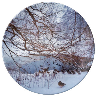 Ducks Gather Around A Frozen Pond Plate