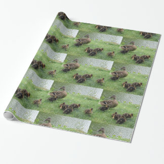 Ducks  gift wrapping paper