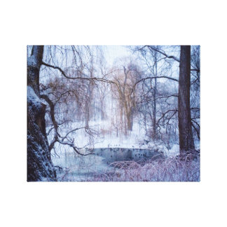 Ducks In A Frozen Pond In New York's Central Park Canvas Print